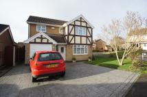 St. Mellion Close Detached house to rent