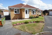 Bungalow to rent in Hickton Drive, Chilwell...
