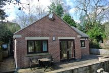 Detached Bungalow to rent in Milford Road, Duffield...