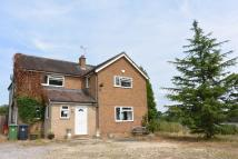 Detached property to rent in Ashbourne Road...