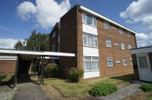 Flat to rent in BEAUFORT GARDENS, Derby...