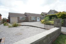 3 bed Bungalow in Back Lane, Wessington...