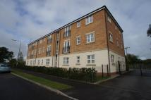 Apartment to rent in STARFLOWER WAY, Derby...