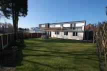 Doncaster Close Semi-Detached Bungalow for sale