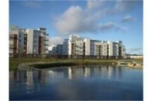 Flat to rent in 12 Whimbrel Wynd...