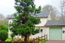 4 bed Detached property in Llangatwg, Crughywel...