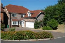 Detached house in 12 Dodnor Mews...