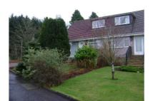 3 bedroom semi detached home to rent in 3 Westport...