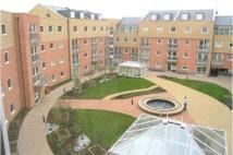 Flat to rent in Wooldridge Close, Feltham