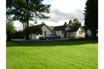 4 bed Bungalow to rent in The Paddock...