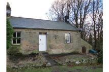 Semi-Detached Bungalow to rent in Bellingham, Hexham...