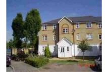 House Share in Clarence Close