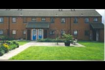 Ground Flat to rent in Beatrice Gardens...