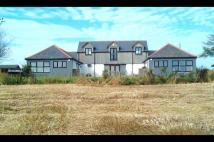 4 bed Detached house in The Steading...