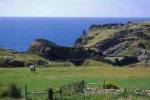 Ground Flat in Castle View, Tintagel