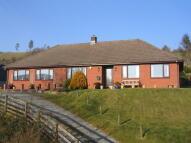 Detached Bungalow for sale in Llanbadarn Fynydd...