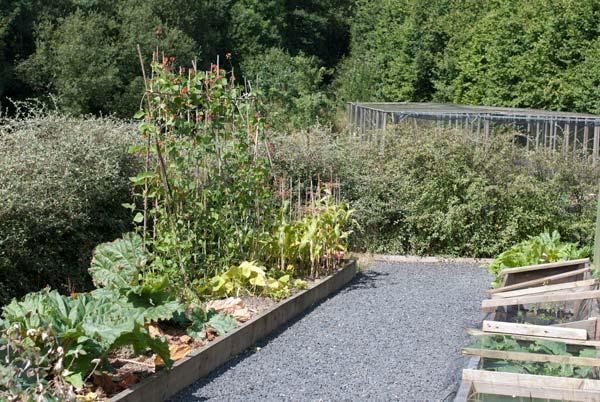 Vegetable area