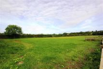 property for sale in Calf Fallow Lane, Norton