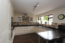 Detached Bungalow for sale in Calf Fallow Lane, Norton