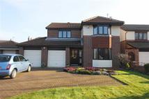 Detached house to rent in Tameside, Stokesley