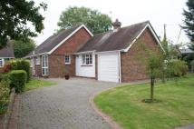 Detached Bungalow for sale in Prime Close, Walberton