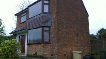 3 bed Detached property to rent in Bramhall Avenue, Harwood...