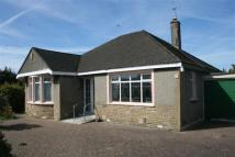 Detached Bungalow for sale in Bare Lane