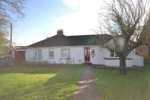 Detached Bungalow for sale in Well Lane, Galleywood...