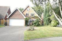 Detached property for sale in Woodfield Close, Walsall