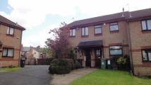 2 bed Detached property to rent in Ivatt Close, Rushall...