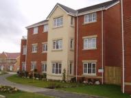 new Apartment in Harris Road, Armthorpe...