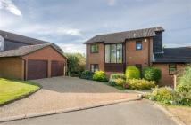 4 bed Detached property in All Saints View...
