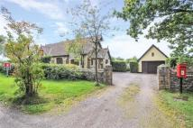 4 Bedroom Detached Property In Otterford Chard