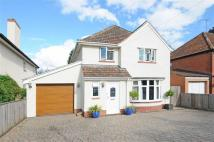 Detached property for sale in Shoreditch Road, Taunton...