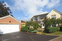Detached home for sale in Comeytrowe, Taunton...