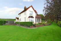 Detached property for sale in Launceston Road...