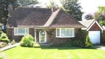 2 bed Detached Bungalow for sale in Mill Close, Eastbourne...