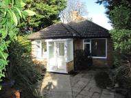 Detached Bungalow in Spring Close, Ratton...