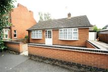 Detached Bungalow to rent in Ireton Street, Beeston...