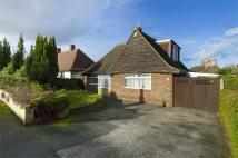 Detached Bungalow for sale in Hawton Cresent...