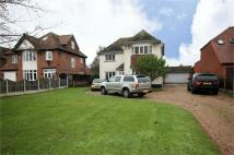Derby Road Detached house to rent