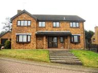 4 bed property in Berrydale, Northampton