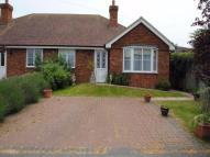 2 bed Semi-Detached Bungalow in Monkey Puzzle Close...