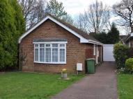 Collington Park Crescent Detached Bungalow to rent