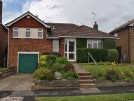 Detached Bungalow in Blackfields Avenue...