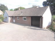 Detached Bungalow for sale in Maer Vale, Exmouth
