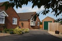 property for sale in Elm Close, Sturminster Newton