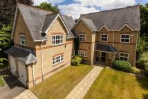 5 bedroom Detached house in Green Walk, Bowdon...