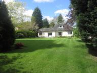 Detached Bungalow for sale in Hasty Lane, Hale Barns...