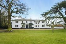6 bed property to rent in Little Laver, Ongar...